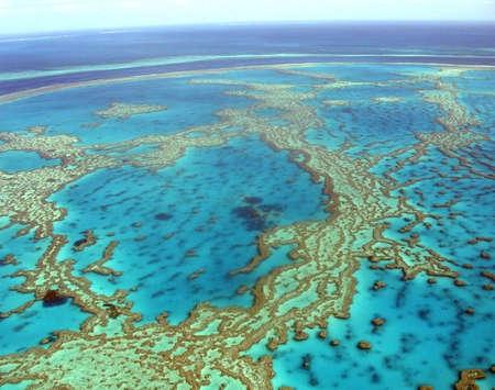 Grande barrière de corail en Australie  Banque d'images - 2826337