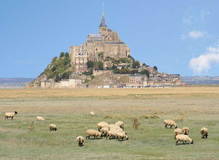 Mont Saint Michel Abbey and sheep, France Stock Photo - 2868830
