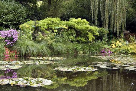monet: Claude Monet lirio del famoso estanque en su casa de Giverny, Francia