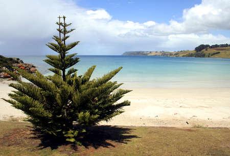 Pretty Beach, Tasmania, Australia photo
