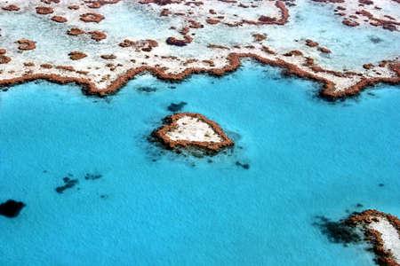 polyp corals: Heart Reef in The Great Barrier Reef, Queensland, Australia