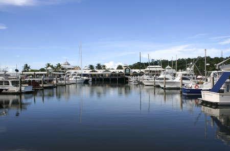 port douglas: Picturesque Port Douglas Marina in far north Queensland, Australia