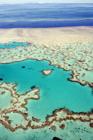 Aerial view of Heart Reef in the Great Barrier Reef, far north Queensland, Australia