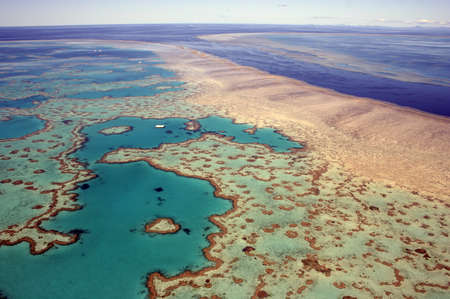 great barrier reef: Aerial view of Heart Reef in the Great Barrier Reef, far north Queensland, Australia