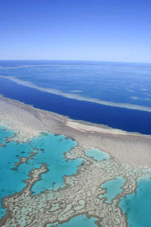 barrier reef: Aerial view of the Great Barrier Reef, far north Queensland, Australia