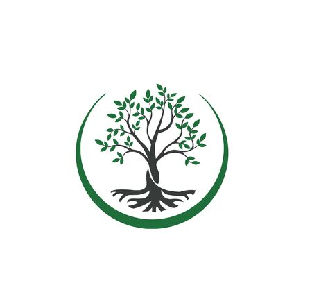 trees and roots, tree branches and leaves. vector logo