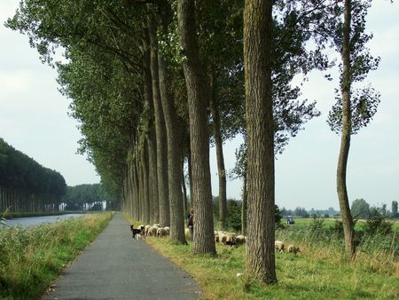 Belgian country road path along the canal