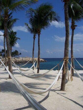 Hammock on a white beach  in Cancun Mexico.