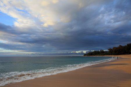 Hawaii Beach Scene photo