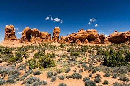 desert scenes: Strange Desert Landscape