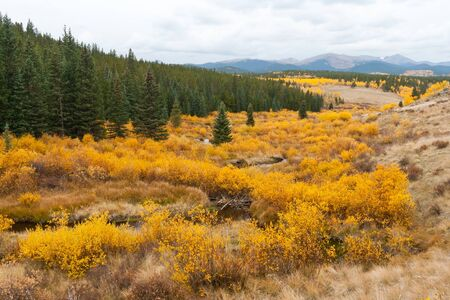 colorado rocky mountains: Fall landscape in the Colorado Rocky Mountains