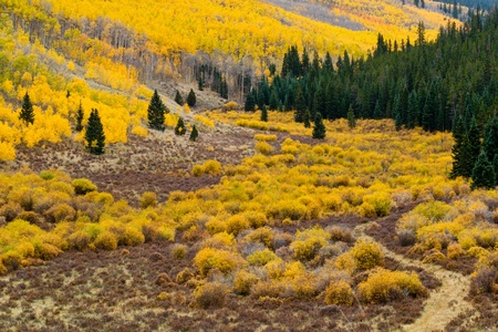 Fall mountain landscape in the Colorado Rockies photo