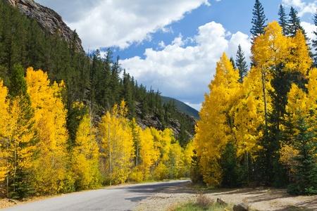 Strada in autunno Aspen Colorado Foresta Archivio Fotografico - 15559227