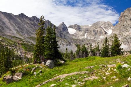 sentier: Colorado Rocky Mountains Paysage en �t�
