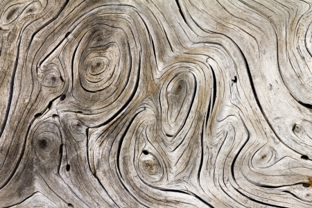 round: Wooden Swirls Organic Background Texture