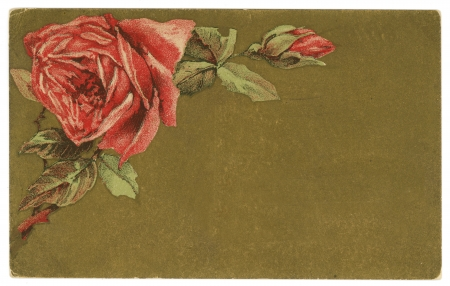 Red Roses Background Paper Texture Vintage Early 1900s Postcard photo