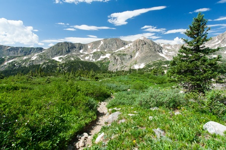 Hiking trail through the wilderness of the Colorado Rocky Mountains Stock Photo - 17781780