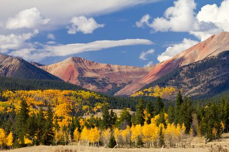 Colorado mountain landscape with golden fall aspen tree forest photo
