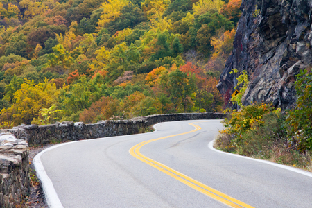 Road travels through a colorful fall forest in New York