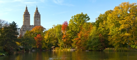 elm: Fall Colors in Central Park Landscape - New York City