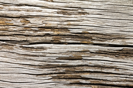 Old cracked wooden background texture