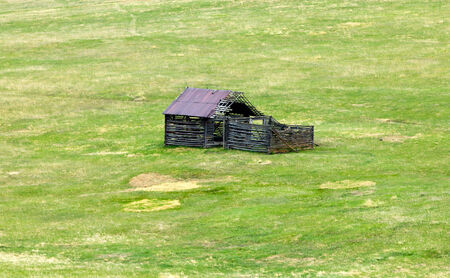 Old abandoned wooden shack in a green grass field photo