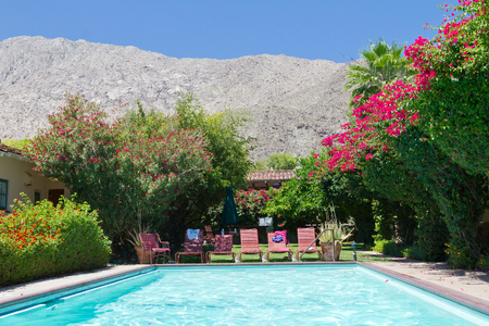 Swimming pool oasis surrounded by colorful blooming flowers in a sunny California garden landscape