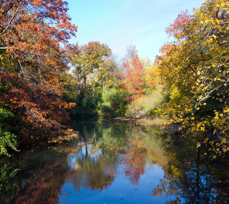 urban scenics: Central Park New York City - Scenic landscape of a pond in Fall Stock Photo