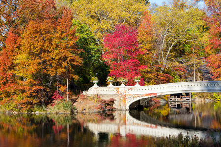 Central Park Bow Bridge in Fall - New York City