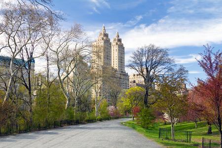 NEW YORK CITY - 중앙 공원에서 화려한 봄 나무를 통해 빈 흔적 바람 스톡 콘텐츠
