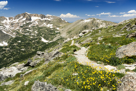 colorado rocky mountains: Arapaho Glacier Trail Crosses the Continental Divide High in the Colorado Rocky Mountains with Summer Wildflowers Blooming on the Tundra