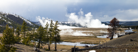 winter park: Panoramic view of Yellowstone National Park landscape scene Stock Photo