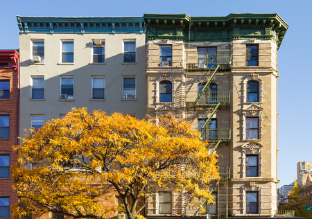 Colorful fall tree with golden leaves in front of an old apartment building on 2nd Avenue in the East Village of Manhattan, New York City