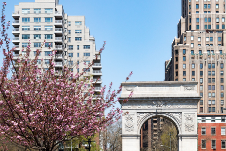 Washington Square Park arch spring scene in Manhattan New York City