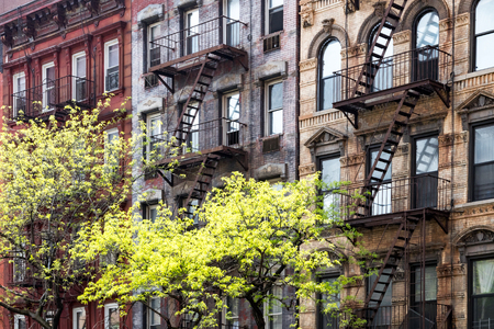greenwich: Sunlight shines on trees in front of historic old buildings on 3rd Avenue in the East Village of Manhattan, New York City NYC