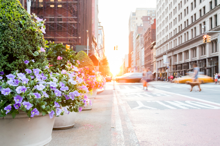 Motion blurred people and cars with colorful flowers on New York City streets with sunlight background Archivio Fotografico