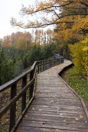 leading: Path leading through the park area