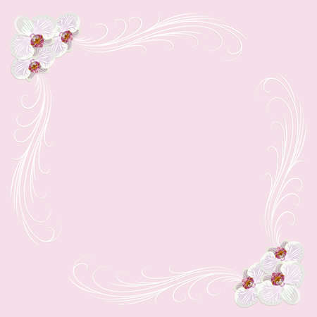 delicate: Delicate frame with orchid flowers on pink background for greeting card or invitation design.