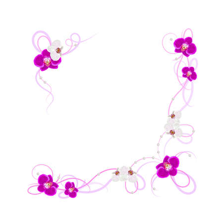 arrangement: Arrangement of orchid flowers isolated on white background for greeting card or invitation design. Illustration