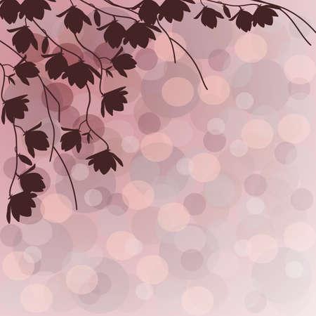 magnolia tree: Dark branches of magnolia tree on pink background.