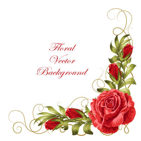 Corner composition with red roses and green leaves. Vector illustration isolated on white background.