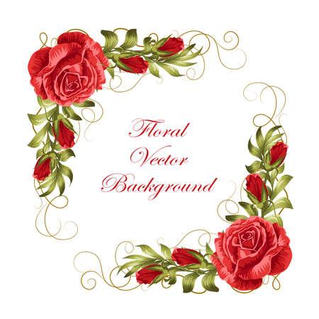 Hermoso marco con rosas rojas y hojas verdes. Ilustración del vector aislado en el fondo blanco.