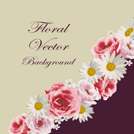 daisy pink: Floral vector background with beautiful white daisies and pink roses.