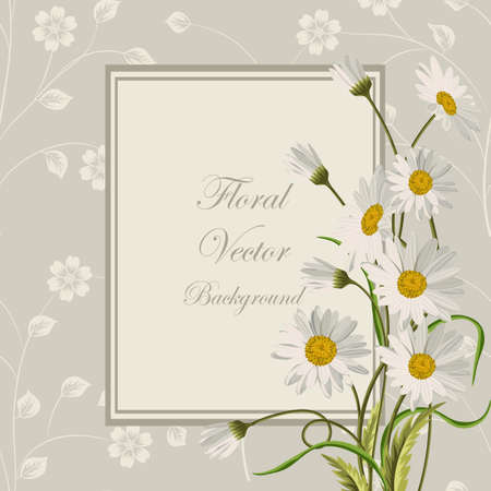 Floral vector background. Square frame with beautiful white daisies on gray background with pattern. Ilustração