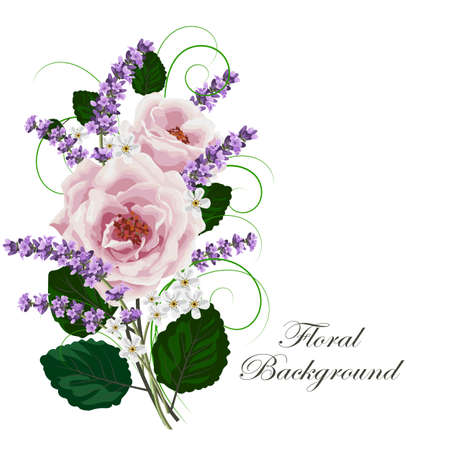 Beautiful pink roses and lavender flowers on white background. Vector illustration.