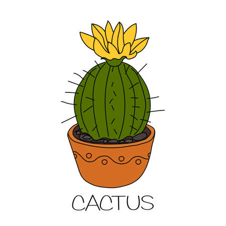 Cactus with yellow flower in brown flower pot. Illustration