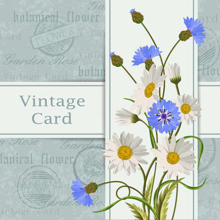 postcard background: Beautiful flowers for invitation card. Vintage postcard background. Vector illustration.