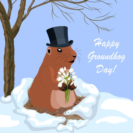 Vector illustration with cute groundhog Illustration