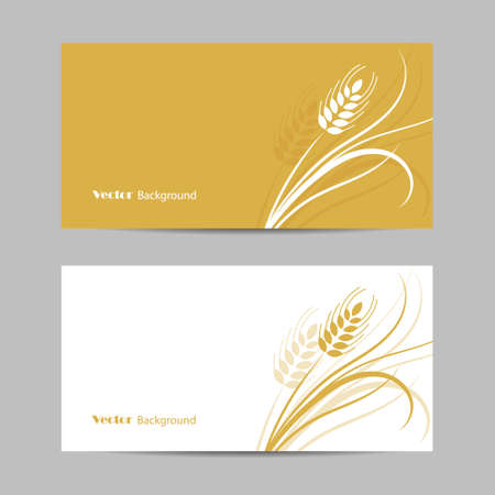 Set of horizontal banners. Wheat spikelet on white and yellow background