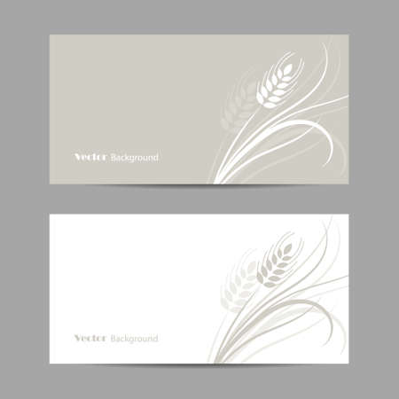 Set of horizontal banners. Wheat spikelet on white and gray background